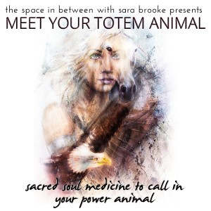 Meet-Your-Totem-Animal-mp3-image-300x300
